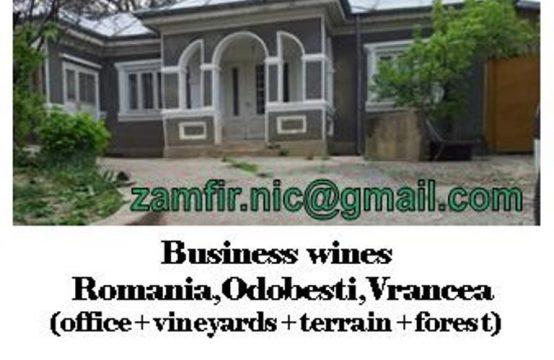 Business sano: viticoltura, vino, agricoltura, foresta – Romania, Odobesti, Jaristea